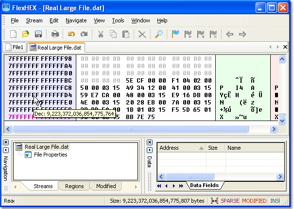 Flex Hex editor handles really huge files